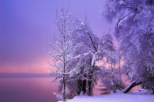 Winter Wonderland: 18 Breathtaking Winter Photography