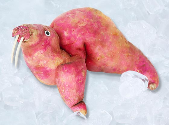Playing with food: Cute Food Animal by Vanessa Dualib