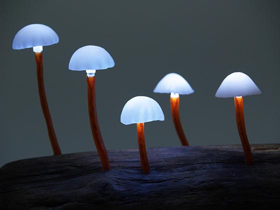 The Great Mushrooming: Interesting LED Mushroom Light