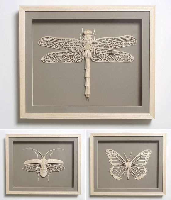 Stick Insects: Delicate Insect Sculptures Made of Matchsticks