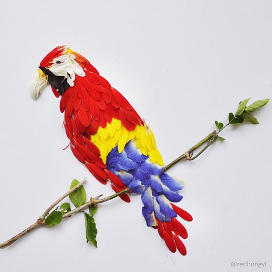 Exotic Birds Made of Flower Petals by Hong Yi