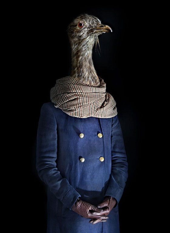 Second Skins: Unusual Photo Series of Dressed Up Animals