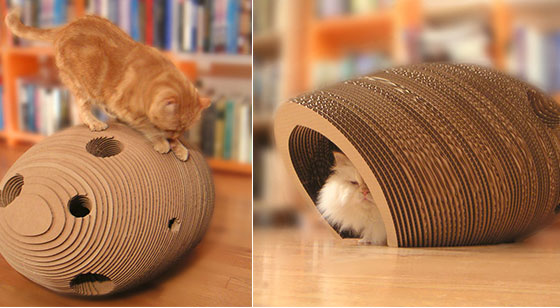 8 Comfortable and Modern Cat Beds