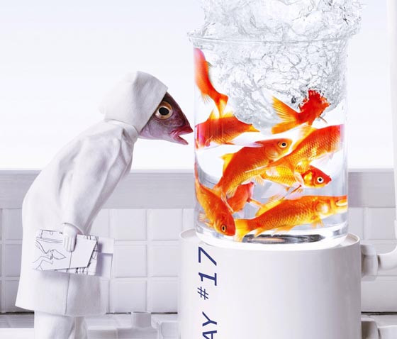Scenes Created with Real Fish Head to Satirize Everyday Life of People