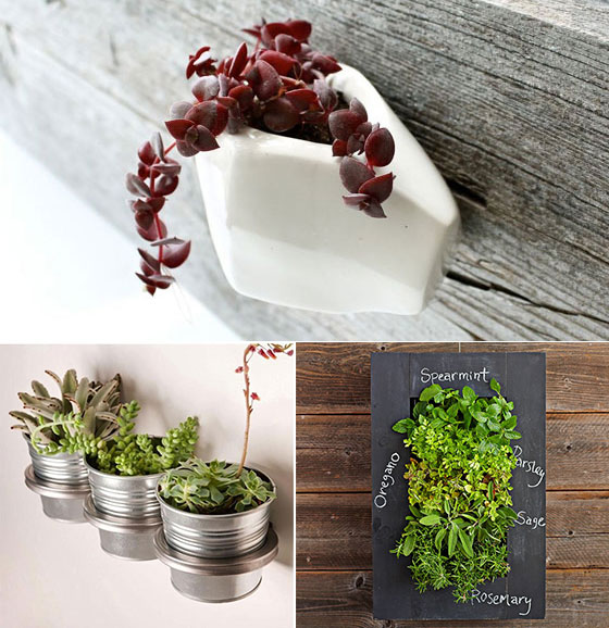 12 cool wall planters for urban dweller