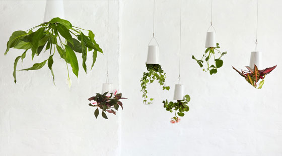 Sky Planter: Ingenious Indoor Garden Solution for Limited Space