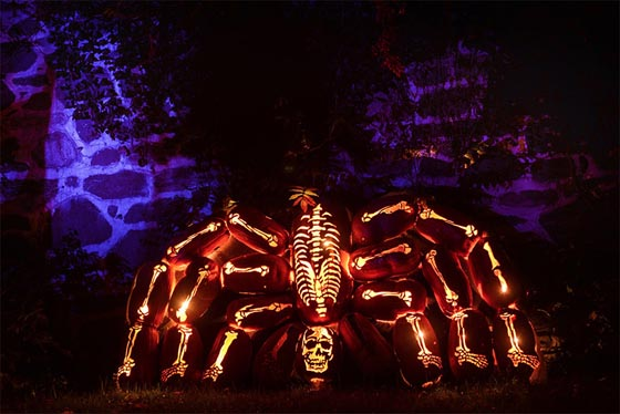 The Great Jack O'Lantern Blaze: Amazing Carved Pumpkin O'Lantern Sculptures