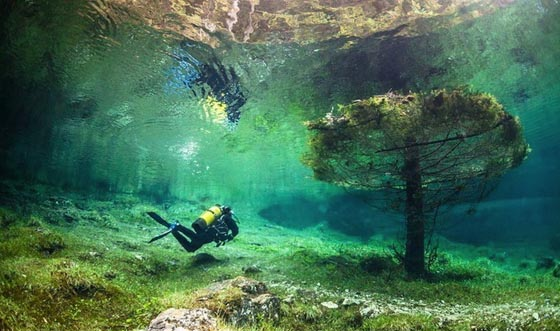 Underwater Park: Park Submerged by Green Lake in Austria