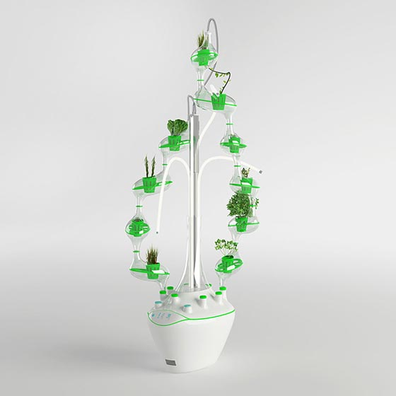 PlanTree: a Tree of Plants