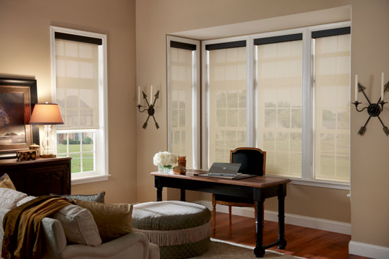 Which Window Treatment is Right for You, Roman or Roller Shades?