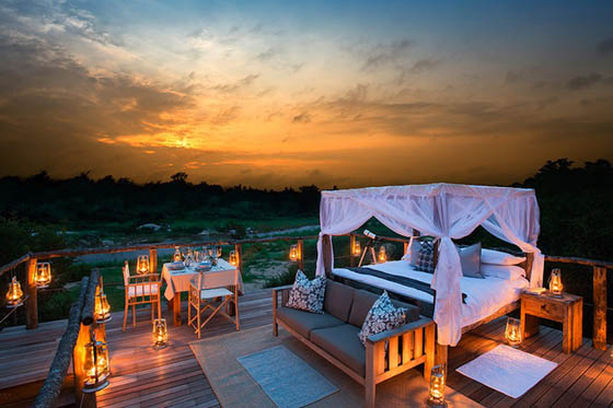 Sleep Under the Stars: Exotic Treehouse in Lion Sands Game Reserve