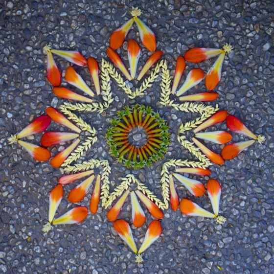 Beautiful Flower Mandalas Created by Kathy Klein