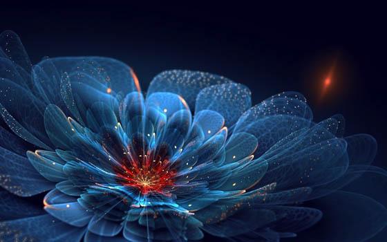 Incredibly Beautiful Fractal Flowers by Silvia Cordedda