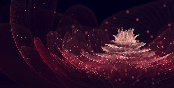 Incredibly Beautiful Fractal Flowers by Silvia Cordedda