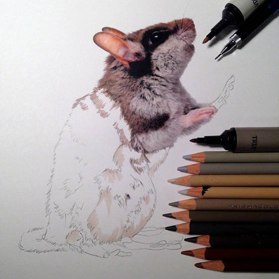 Photo-realistic Illustrations by Karla Mialynne