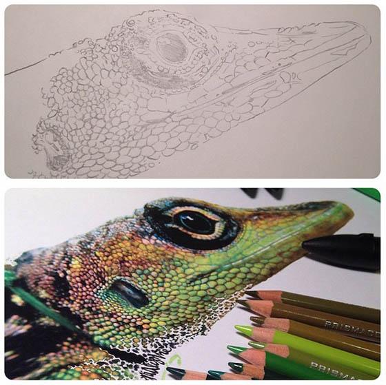 Photo-realistic Illustrations by Karla Mialynne