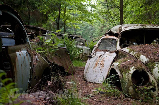 Stunning Car Graveyard in Belgium Forest