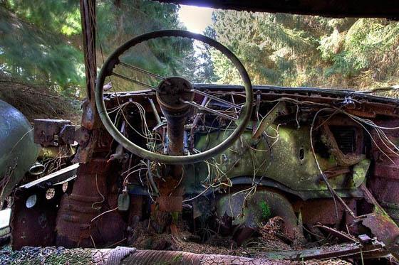 Stunning Car Graveyard in Belgium Forest