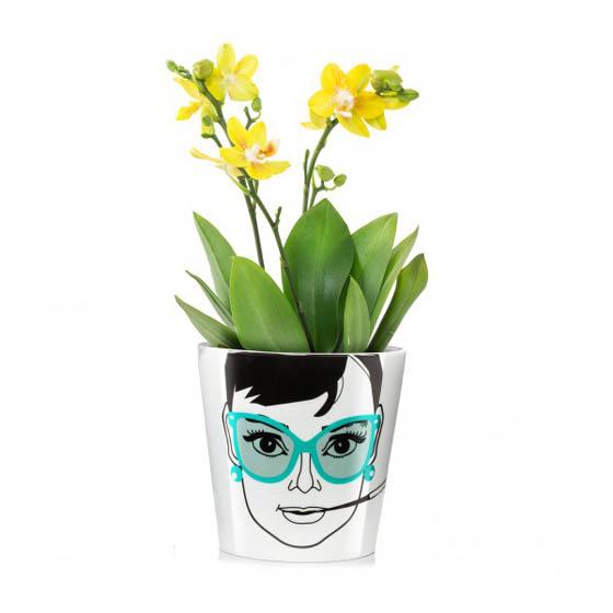 Playful Flower Power Plant Pots