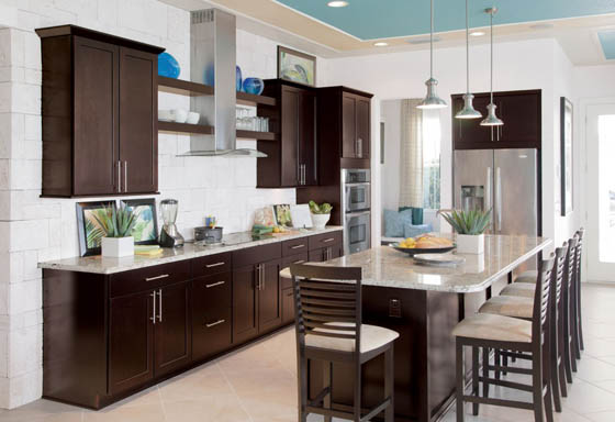 Most Popular Cabinet Styles For Your Dream Kitchen Design Swan