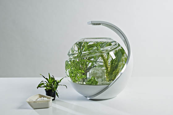 Avo innovative self cleaning fish tank design swan for Clean fish tank