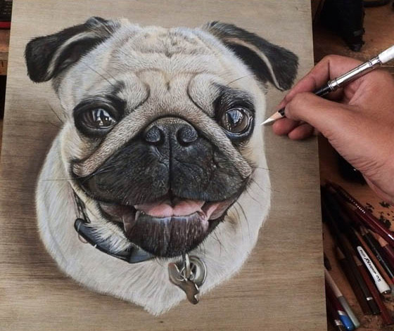 Hyper-realistic Pencil Art on Wood By Ivan Hoo