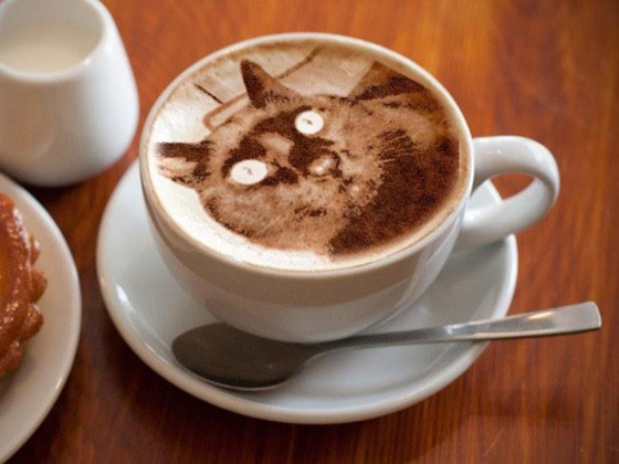 Latte Cat: Photo-realistic Cat Drawing Created by Coffee Foam