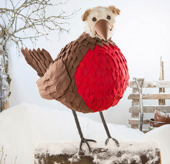 Photographer Turns His Dog Into Different Animal to Celebrate Christmas