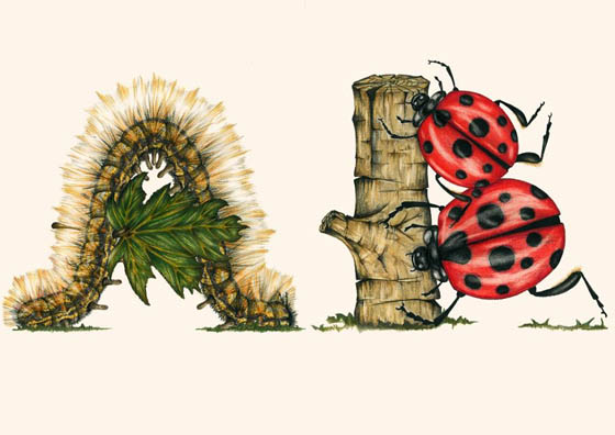 Unusual Insect Alphabet by Paula Duță