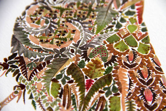 Incredible Intricate Pressed Fern Leaf Illustrations by Helen Ahpornsiri