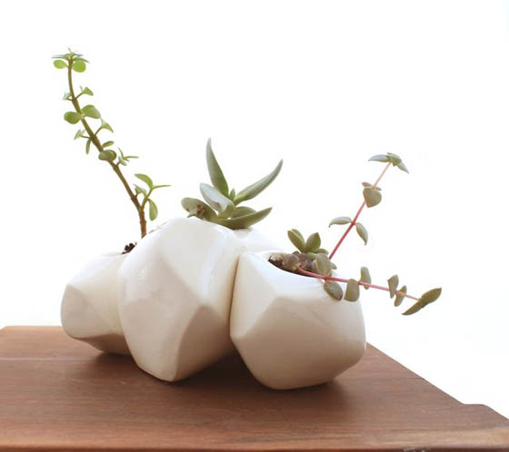 8 Cool Table Planters to Green Your Table