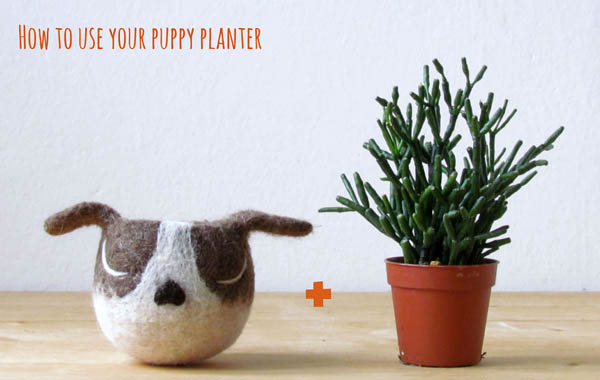 Adorable AnimalPlanters: Turn Your Flower Pots Into Cute Animals