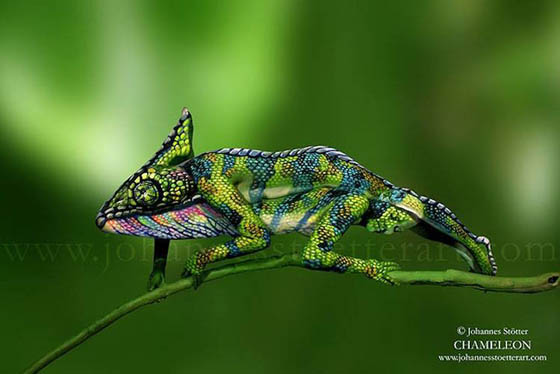 Human Chameleon: Incredible Body Painting