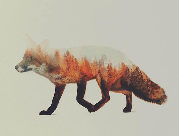 Stunning Double Exposure Animal Portraits Merging With Beautiful Scenery