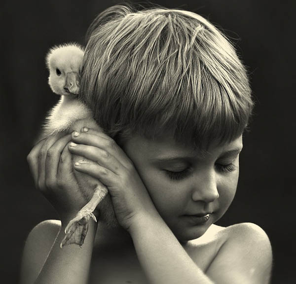Heartwarming Photograph of Kids and Farm Animals