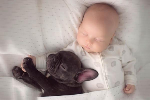 Heartwarming Photos of Baby and Bulldog