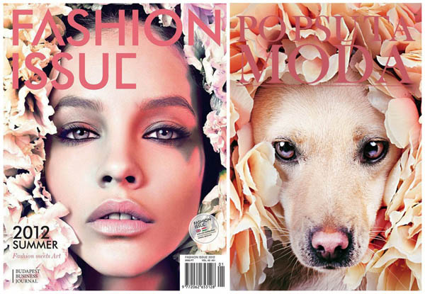 Help Shelter Animals: Creative Campaign Converting Homeless Dogs into Fashion Models on Magazine
