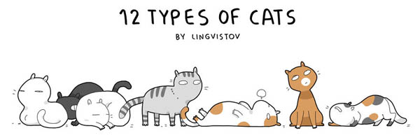 12 Types of Cats, What Type You Have?