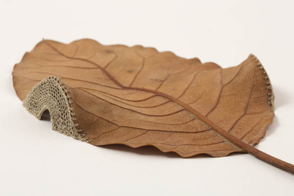 Delicate Crocheted Leaf Sculptures