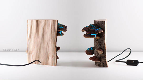 Magical Night Lamp Created from Crystals, Tree mushrooms and Timber