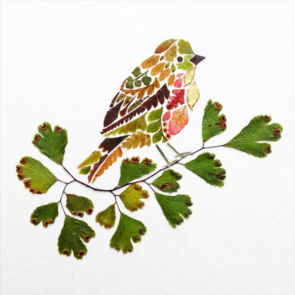 Wildlife Illustrations Made of Pressed Plant by Helen Ahpornsiri