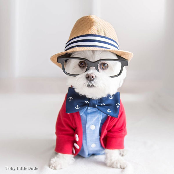 Toby: the Most Hipster Dude on Instagram