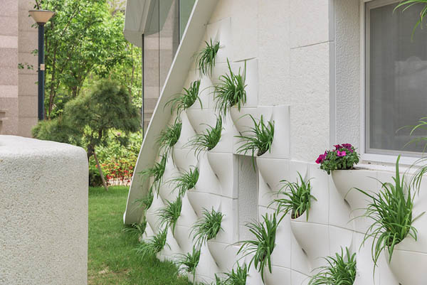 House with Plant Pot on its Exterior Wall