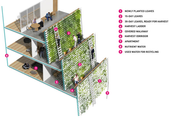 the vertical farm despommier pdf