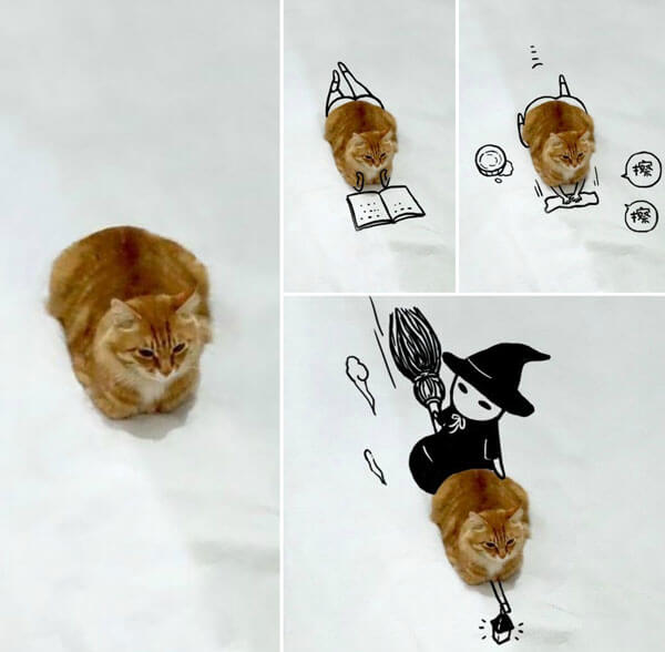 Hilarious Cat Doodle Challenging