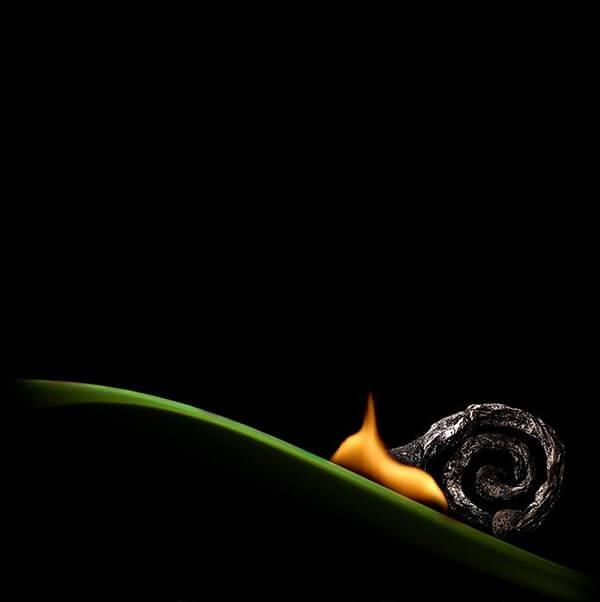 Matches Magic: Incredible Mini-sculptures Using Burnt Matches