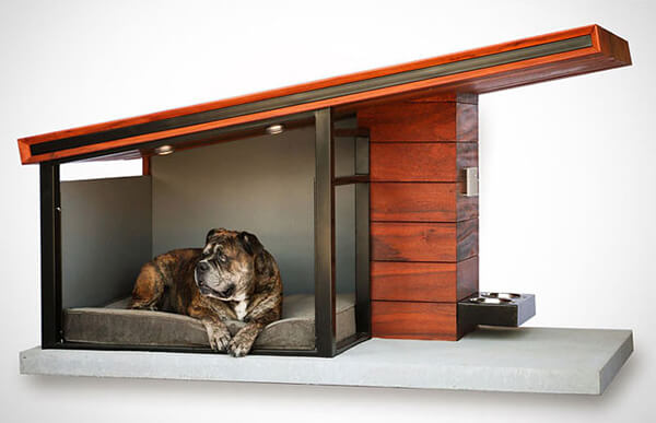 Would You Like to Spend 3,650 USD to Buy Your Dog a House?