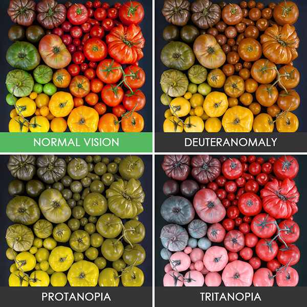 How the World Looks Like For Color Blind People