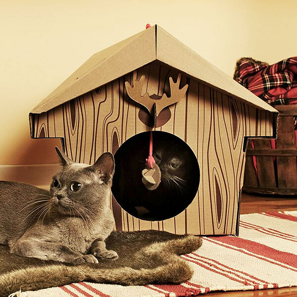 10 Unusual Cardboard Cat Playhouses