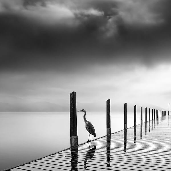 Stunning Black And White Photography